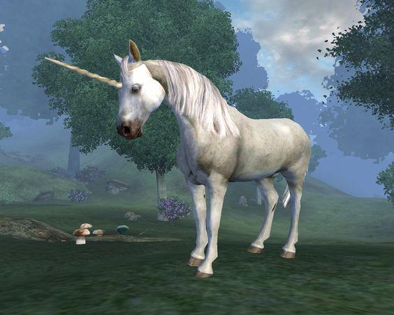 Resultado de imagem para Unicornios wiki