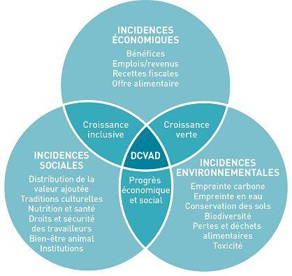 Présentation| FAO | Organisation des Nations Unies pour l'alimentation et l'agriculture