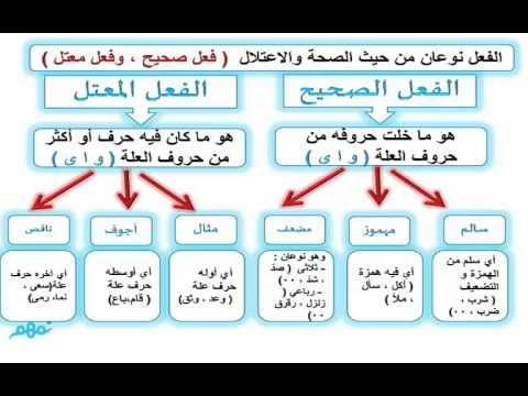 انواع الفعل المعتل Recherche Google Learn Arabic Language Arabic Language Learning Arabic