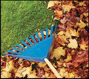 Getting flower beds ready in the fall for the best in the spring.