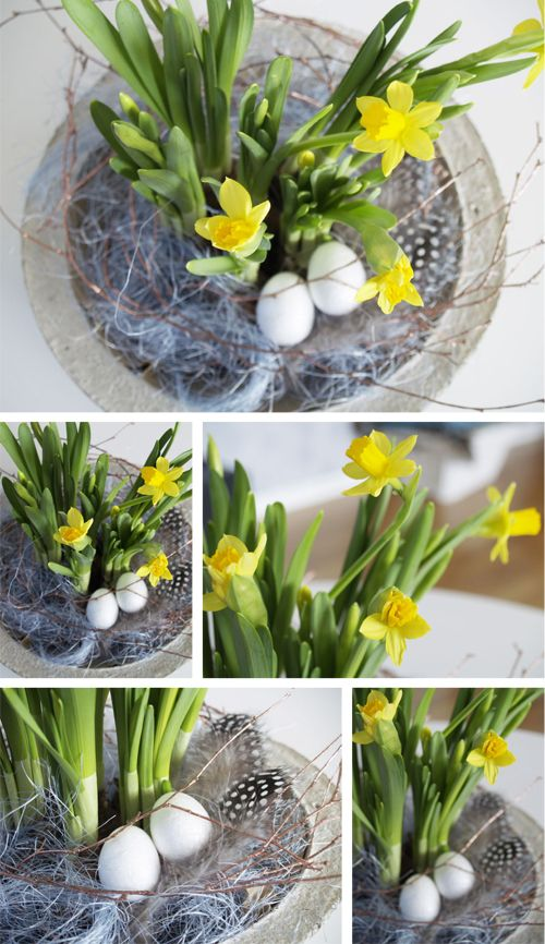 fluffy easter easter joy and more easter flowers daffodils easter ...