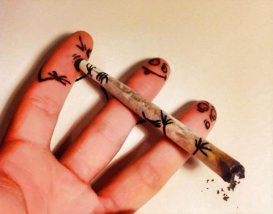 Compañerismo Weed