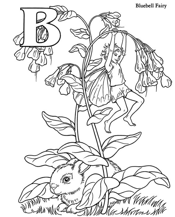 Bluebell flower fairy coloring pages colouring adult for Flower fairy coloring pages