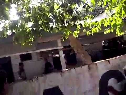 Imagens fortes:Grupo invade delegacia e atira em presidiário no Mato Grosso:veja o vídeo | R12Noticias.com