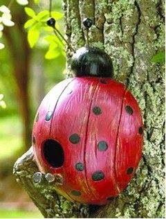 Lady bug coconut birdhouse