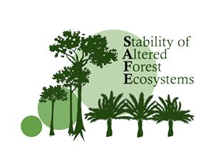 S.A.F.E. Project | Stability of Altered Forest Ecosystems