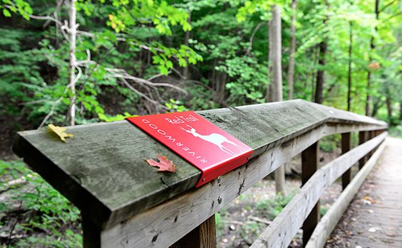 On bridge? Doesn't get in way or cluster visitors too much but gives added context. Trail signage at The Riverwood Conservancy, Mississauga, ON. Entro Design