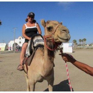 Camel Ride Tour in Rosarito Beach Baja California Mexico