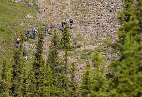 Kanada: Zu Fuß in die Einsamkeit - SPIEGEL ONLINE - Nachrichten - Reise