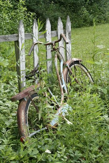 Bike: Pedal Pusher, Vintage Bikes, Rusty Bicycle, Picket Fence, Garden Bike, Bicycles Find, Old Bikes, Country Life