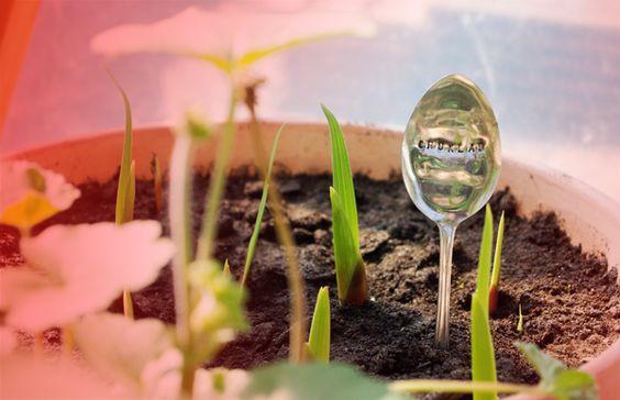 Skyltar till trädgårdslandet | Garden things | Pinterest