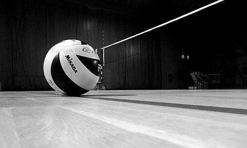 35 Gambar Volleyball Hd Wallpaper Black And White Terbaru 2020 Gambar Bola Voli Bola Voli Spoonflower