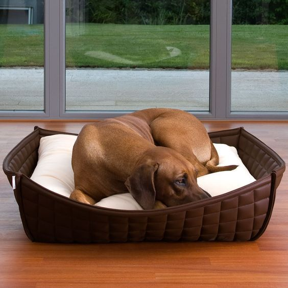 ♥ Faux Leather Dog Bed ♥ BOWL Faux leather pet bed ideas from your friends at http://www.SpiffyPetProducts.com: