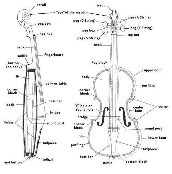 Bowholdbuddies Holdfish Cellophant Accessories On Twitter Learn Violin Violin Suzuki Violin