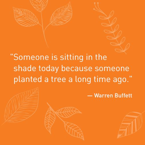 Shade Quotes: Warren Buffet Quotes, The Shade And A Tree On Pinterest
