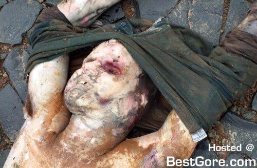 Fake Dog Attack Post Mortem Video