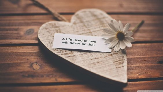 a_life_lived_in_love_will_never_be_dull-wallpaper-1366x768.