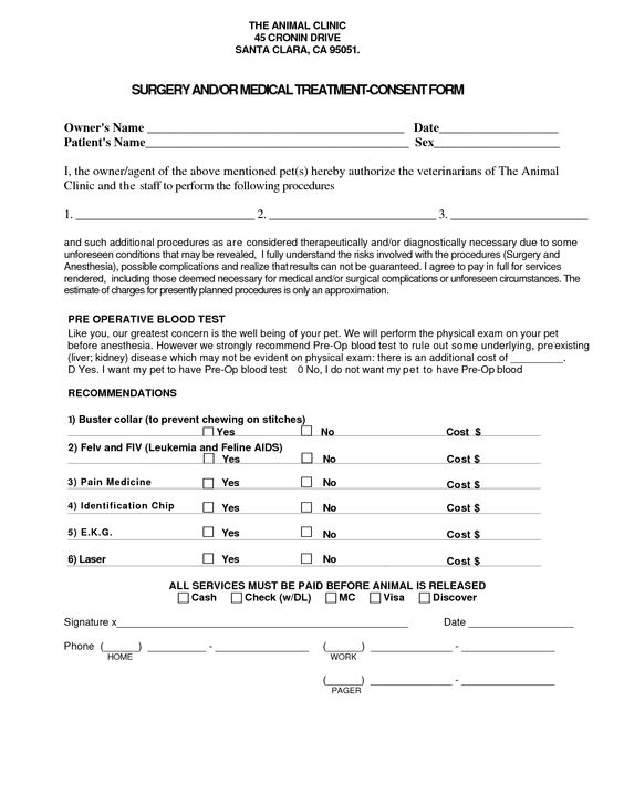 Medical Treatment Consent Form Template My work Pinterest - medical authorization form template