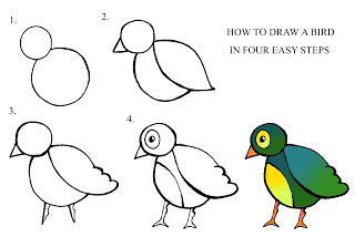 draw ... a bird