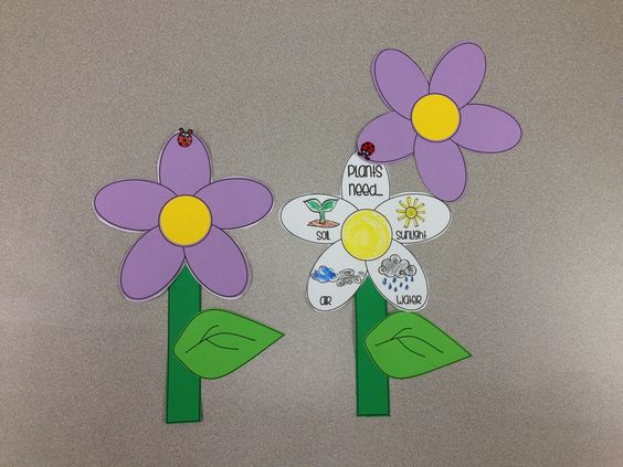 Needs of a Plant Craft visit www.letsgetreadyforkindergarten.com