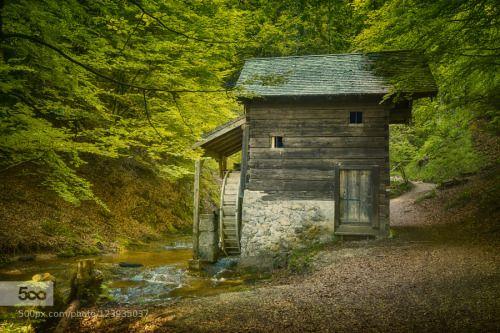 Die alte Plötzmühle by Hribernigg_Richard  Ebenau Mill Mühle Die alte Plötzmühle Hribernigg_Richard