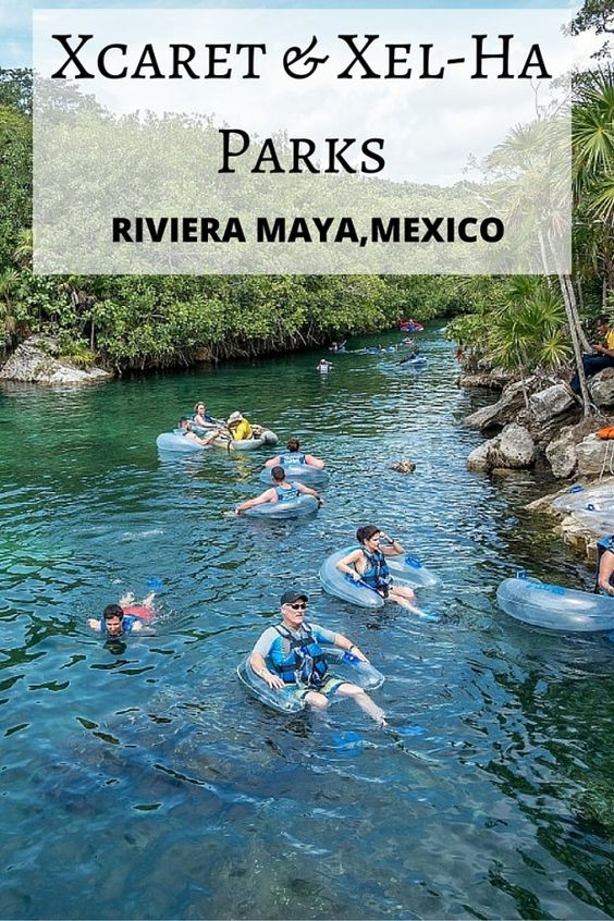 Xcaret and Xel-Ha parks both offer great ways to spend a fun day in Mexico's Riviera Maya. But which one is best for you? Take a look at this review of everything each attraction has to offer.