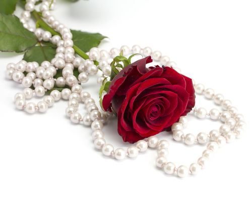 roses and pearls - photo #22