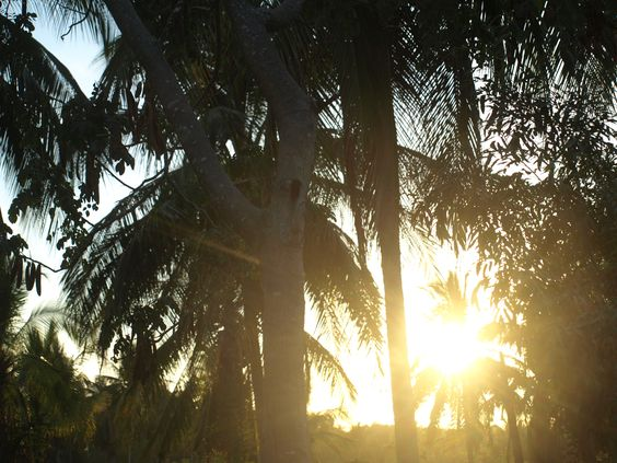 Here comes the sun, it will be a hot day again today..