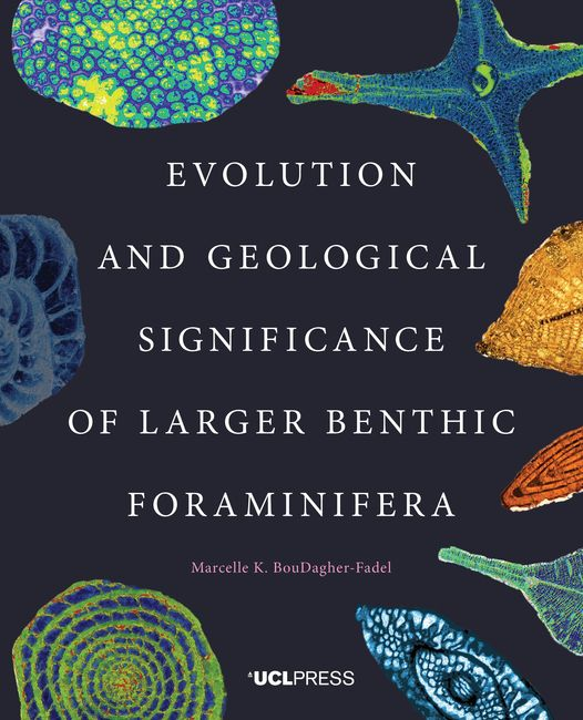 Resultado de imagen de Evolution and Geological Significance of Larger Benthic Foraminifera