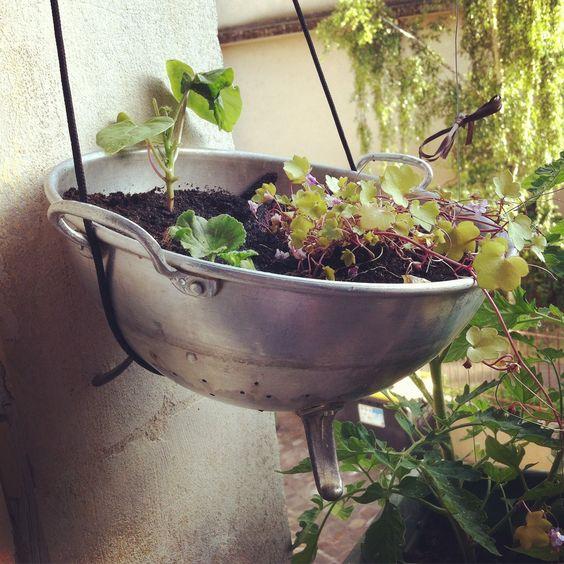 Passoire jardinière :)