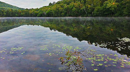 Lac à saucisses - King lake
