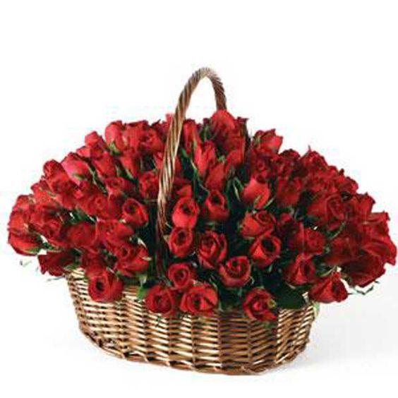 Артикул: 032-28 Состав: 101 роза красного цвета Размер: Высота 50 см Роза: Выращенная в Украине http://rose.org.ua/tsvety-v-korzine-svezesrezanie/1153-malenkij-kapriz.html #цветы #заказатьцветы #доставкацветов #купитьцветы #цветывкорзине #заказатьцветывкорзине #доставкацветовкиев #цветывкорзине #доставкацветовпоукраине #flowers #SendFlowers #RoseLife: