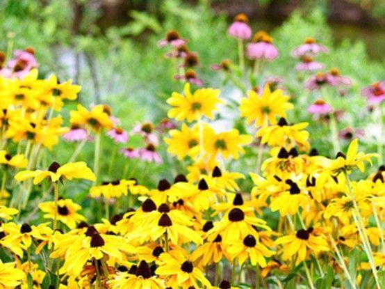 La primavera es el despertar de la tierra. Los vientos de marzo son el bostezo de la mañana.: