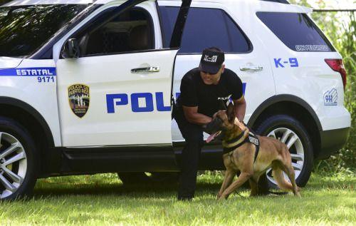 [VIDEO] Has visto a un can de la Policía en acción?...