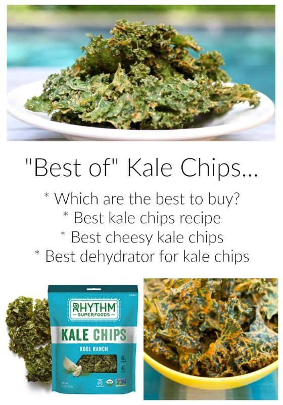 Best of Kale Chips to Buy, Cheesy Kale Chip Recipes, Kale Chip Dryer