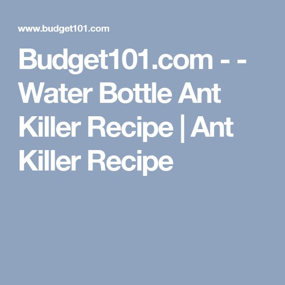 Budget101.com - - Water Bottle Ant Killer Recipe | Ant Killer Recipe