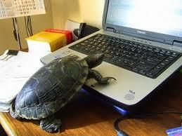 Computer running slow these days? We can help. http://auroralaptop.wordpress.com/contact