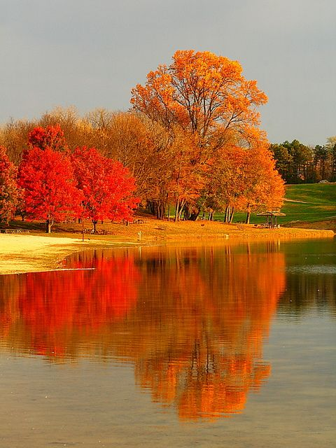 New jersey jersey and autumn trees on pinterest for Lebanon valley honda