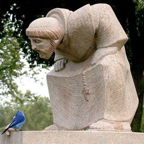 Que foto SENSACIONAL! O pássaro azul, ao lado do pássaro escultura, olhando para São Francisco tão atentamente como se de fato o ouvisse. Um raro e feliz flagrante de Jim Frazier.