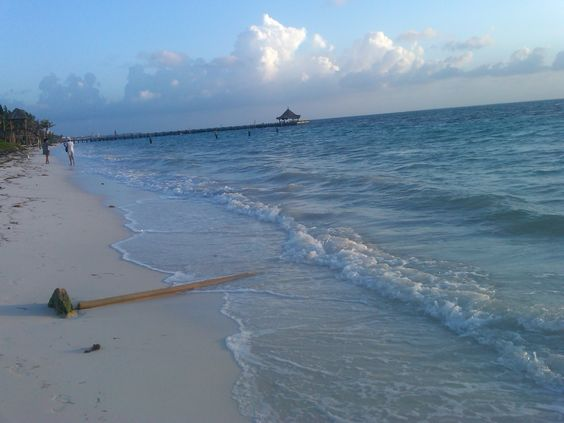 Pinterest the world s catalog of ideas for Riviera maya fishing