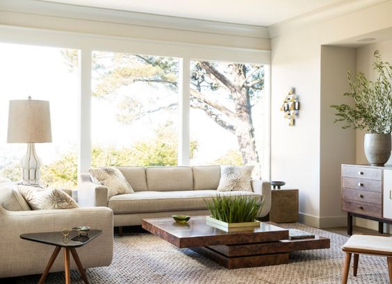 Contemporary Planters In The Living Room Contemporary - Contemporary planters living room