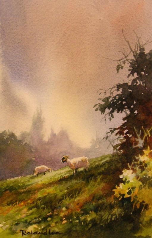 English Sheep on the Hillside