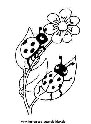 Marienkaefer Ausmalbilder Ausmalbilder Marienkaefer Coloring Pages Kindergarten Crafts Small Hummingbird Tattoo