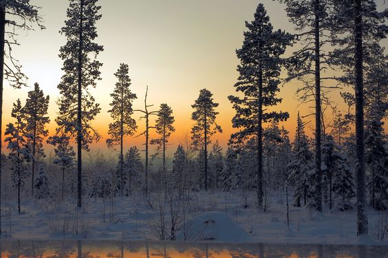Winter Solstice: What to Know about December 21