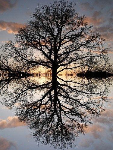 Sometimes I feel reflective.