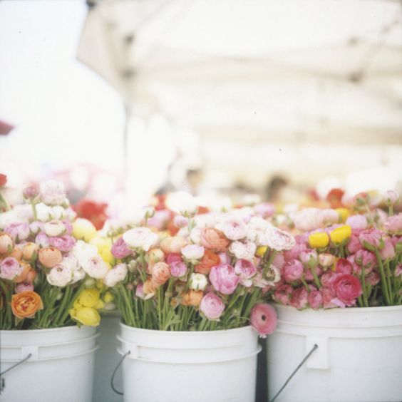 buckets and buckets of Spring florals   Photography by http://cindyloughridgephotography.com