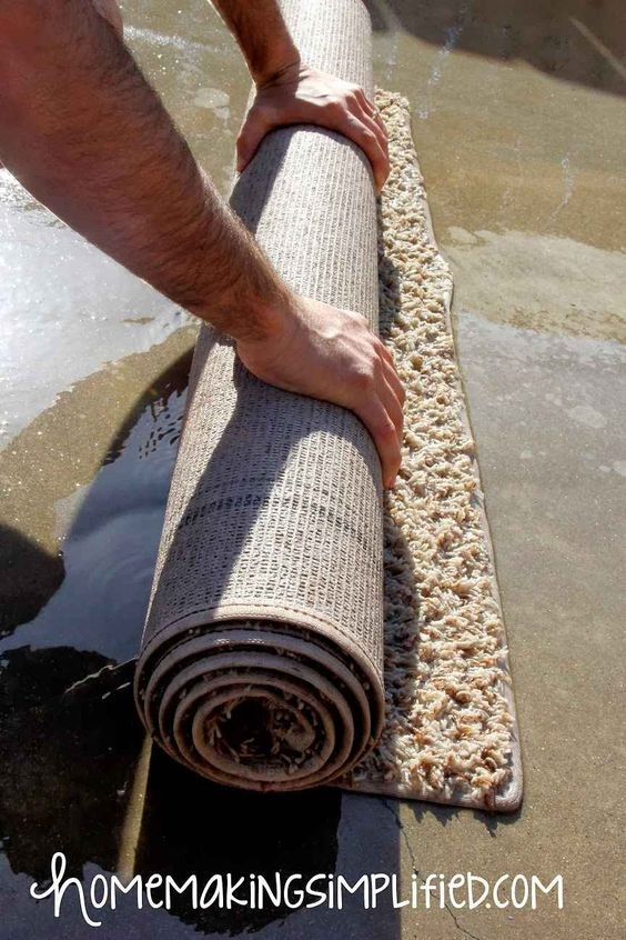 If you don't want to pay to have your area rug professionally cleaned, you can wash it out in the driveway.