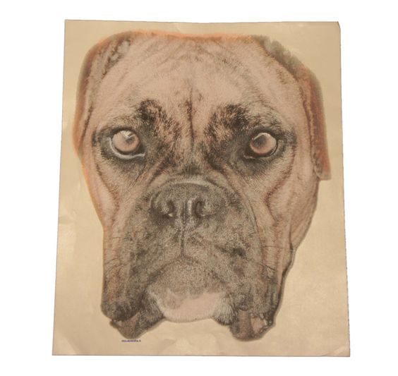 ArtBrands Brindle Boxer 17700D0 Large Dog Face T Shirt Iron On Heat Transfer #ArtBrands