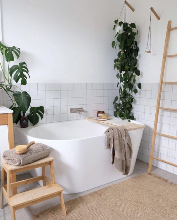 Check out our round up of top indoor plants that thrive in the bathroom. You'll find loads of ideas and gorgeous plants who will love calling your bathroom home. Plus, many of them are low-maintenance (ie. hard to kill indoor plants!) which is perfect if you have a bit of a brown thumb! Click the image of this devil's ivy plant (aka pothos) for more ideas and plants to check out.