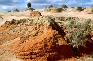 Mungo Man – der Urvater der Aborigines   WALKABOUT